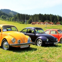 Käfertreffen Gaal 2015